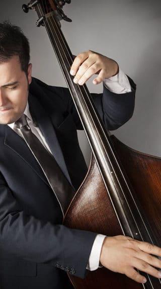 David White Bassist