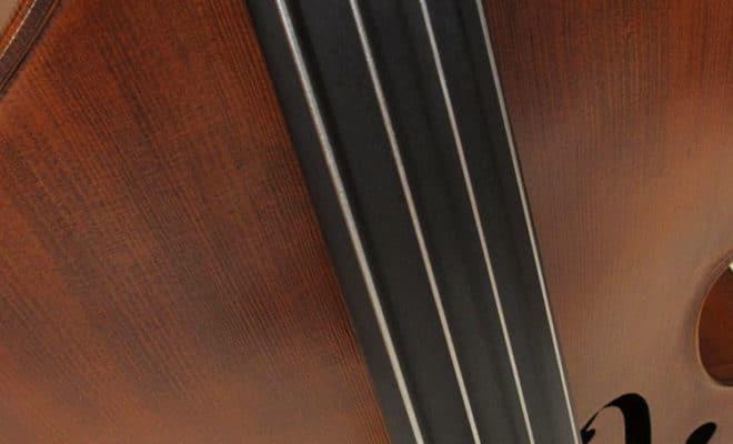 Upton Mittenwald Hybrid Double Bass